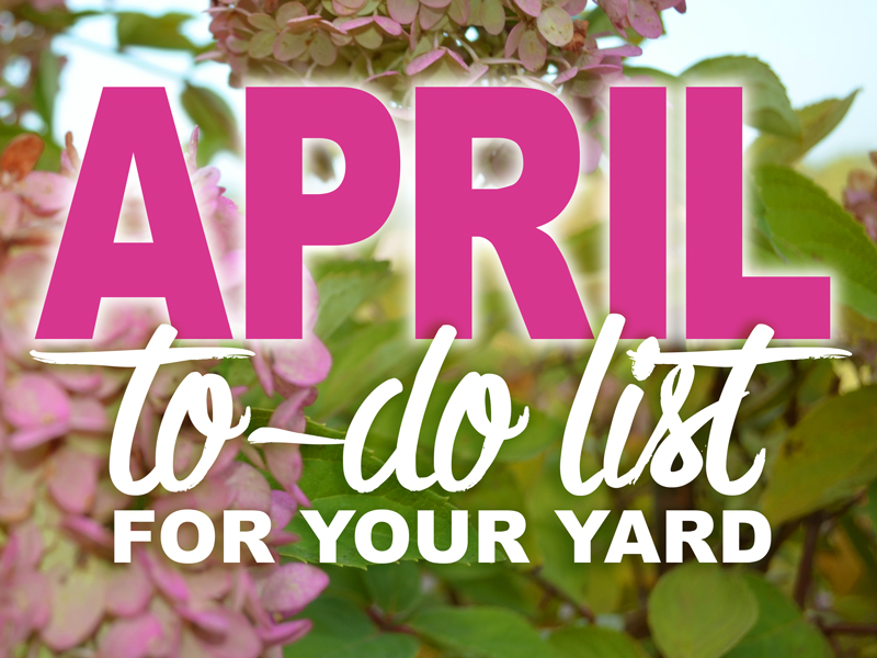 April To-Do List for your yard